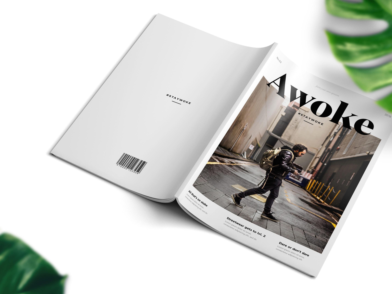 Awoke-Case-3